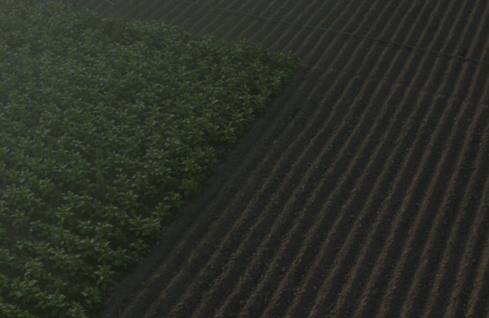 FEATURED POST Foreign Interests in U.S. Agricultural Land